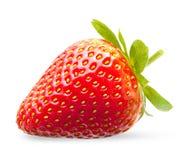 Strawberry macro. Isolated on white Royalty Free Stock Photos