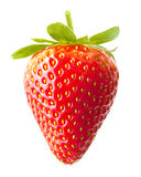 Strawberry macro Stock Images