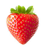 Strawberry macro Stock Photography