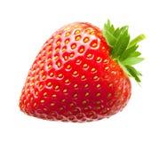 Strawberry macro. Isolated on white Royalty Free Stock Images