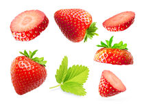 Strawberry macro. Isolated on white Stock Image