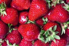 Strawberry macro photo. Red strawberry in a tray macro photo Stock Photos