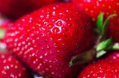 Strawberry macro photo. Red strawberry in a tray macro photo Stock Image
