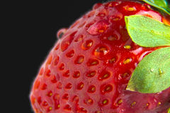 A Strawberry macro. A red juicy strawberry macro Stock Images