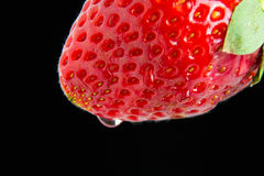 A Strawberry macro. A red juicy strawberry macro Royalty Free Stock Image