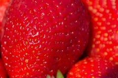 Strawberry macro, strawberries closeup Royalty Free Stock Photo