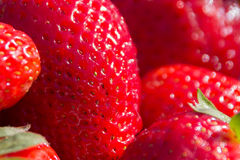 Strawberry macro, strawberries closeup Royalty Free Stock Images