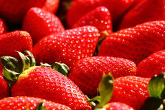 Strawberry macro. Macro view of many strawberries lying close to each others, hit by sun light Stock Image