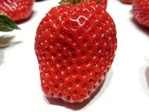 Strawberry macro. On white background Stock Photos