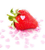 Strawberry macro  on white background, closeup Stock Photography