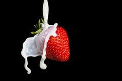 Strawberry Making A Splash. Isolated on black background. Royalty Free Stock Photos