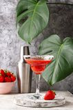 Strawberry Margarita cocktail in glass. Summer alcoholic strawberry Margarita cocktail in glass royalty free stock photography