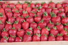 Strawberry market Stock Photo