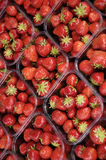 Strawberry in the Market. Bergen Norway, focused into center Stock Photos