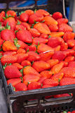 Strawberry in a market Stock Images