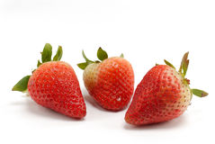 Strawberry meeting Royalty Free Stock Photography