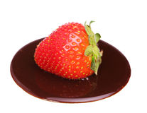 Strawberry on melted chocolate isolated Royalty Free Stock Image