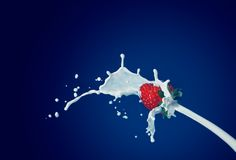 Strawberry with milk. Ripe red strawberry with white milk Stock Photo