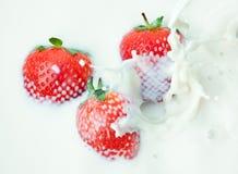 Strawberry in the milk Stock Photo