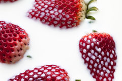 Strawberry in milk Royalty Free Stock Photo