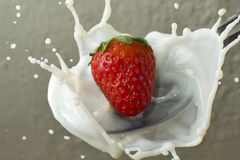 Strawberry on milk Stock Photos