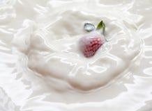 Strawberry in milk. The fresh Strawberry in milk Stock Photo
