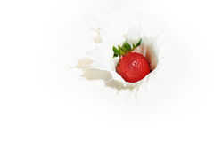 Strawberry Milk Series 1. An image of strawberry in milk Royalty Free Stock Photo