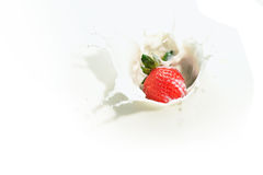 Strawberry Milk Series 2. An image of strawberry in milk Royalty Free Stock Image