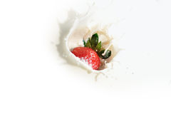 Strawberry Milk Series 4. An image of strawberry in milk Royalty Free Stock Images
