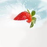 Strawberry milk splash Stock Image