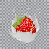 Strawberry and milk splash. Fruit yogurt. Realistic vector illustration. Strawberry and milk splash. Fruit yogurt. Realistic vector illustration Royalty Free Stock Photos