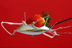 Strawberry in milk splash. Spoon Royalty Free Stock Images