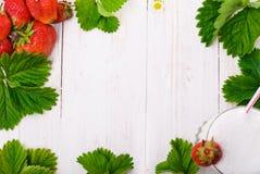 Strawberry milkshake. Frame. Stock Images