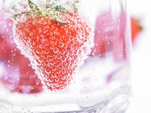 Strawberry in Mineral water with boobles Royalty Free Stock Image