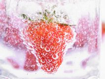 Strawberry in Mineral water with boobles Royalty Free Stock Photography