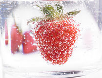 Strawberry in Mineral water with boobles Royalty Free Stock Images