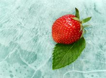 Strawberry and mint. Leaf on ice Royalty Free Stock Photos