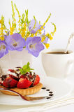 Strawberry with a mint and chocolate, cup of coffe Stock Photos