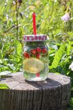 Strawberry Mojito cocktail with strawberry, lemon and fresh mint a glass jar with a cocktail straw. Royalty Free Stock Image