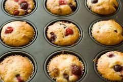 Strawberry muffin. Just out of the oven Royalty Free Stock Photos