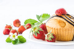 Strawberry muffins Stock Photography