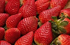 Strawberry, Natural Foods, Strawberries, Fruit royalty free stock photos