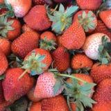 Strawberry. Natural fresh strawberry royalty free stock image