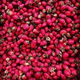Strawberry. Naturel red stock photo