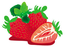 46-Strawberry-NK1. Strawberry fruits Healthy fresh sweet stock illustration