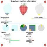 Strawberry nutrient information. Strawberry mosaic and nutrient information graphics Stock Photo