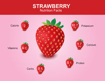 Strawberry nutrition facts, strawberry fruit with information, strawberry vector Stock Image