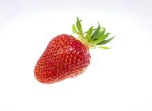 Strawberry organic Stock Image