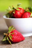 Strawberry outdoor Royalty Free Stock Photography