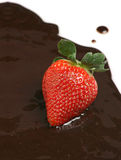 Strawberry over chocolate sauce Royalty Free Stock Photography